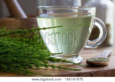 A cup of horsetail tea with fresh and dried horsetail on a wooden background