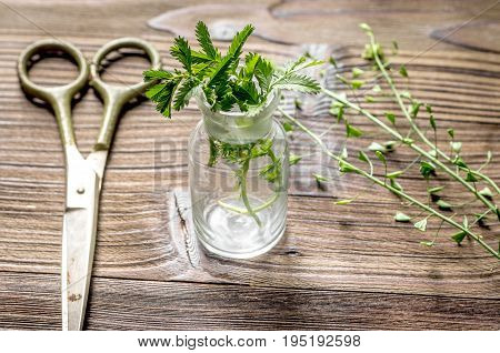 Homeopathy. Store up medicinal herbs. Herbs in glass on wooden table background.