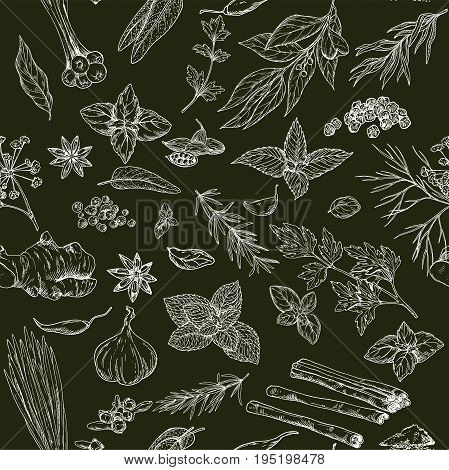 Seamless pattern with hand drawn culinary herbs and spices on black background, vector illustration