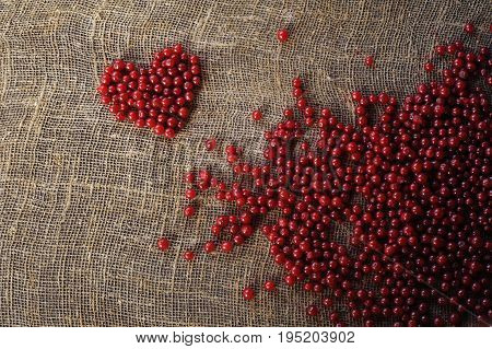 Purple heart of red currant berries collected on an organically clean rural farmstead