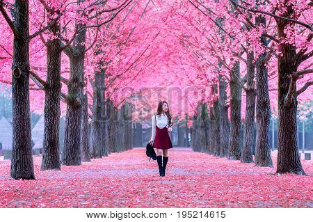 Beautiful Girl With Pink Leaves In Nami Island, South Korea.