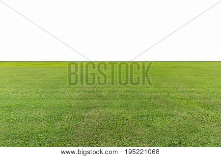 green lawn isolated on white with clipping path