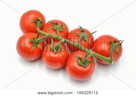 tomato on a white background isolated photo