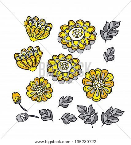 yellow decorative stylized floral fall element set. black and gray marigold flower motif