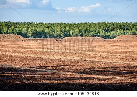 Bog And The Field On Which The Production Is Carried Out In Black Peat Mining