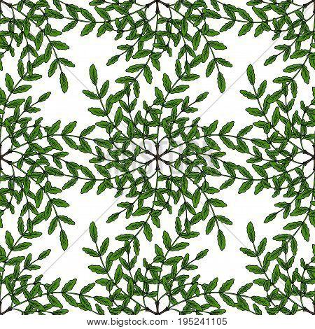 Indian Frankincense Salai or Boswellia serrata vintage illustration.Olibanum-tree Boswellia sacra , aromatic tree. Ink hand drawn herbal illustration. Seamless pattern.