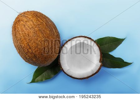 Tropical coconuts on a saturated blue background. Healthful coconut cut in half. A whole hard nut and green leaves. Sweet organic fruits full of nutrients.
