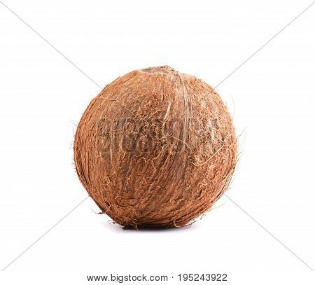 Natural, organic, fresh, tropical coconut, isolated on a white background. Close bright brown coconut. Healthful lifestyle. Hawaiian coconuts. Freshness, nature, summer concept.