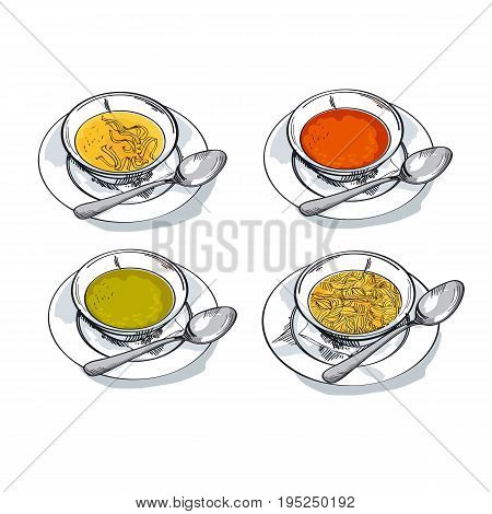 vegetable soup sketch vector illustration. traditional meal bowl assorted