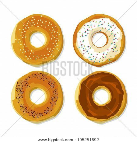 bagel  with seed flat style poster. food snack vector illustration