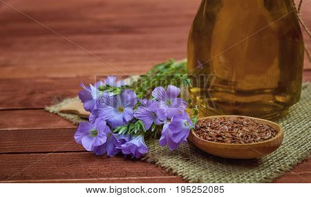 Flax Seeds In Vintage Spoon,  Linum Plants With Flower And Linseed Oil On Glass Bottle