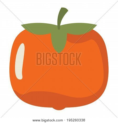 Persimmon design juicy fresh fruit icon vector template. Raw persimmon. Eco bio health food