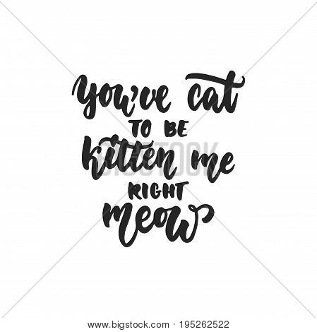 You've cat to be kitten me right meow - hand drawn dancing lettering quote isolated on the white background. Fun brush ink inscription for photo overlays, greeting card or print, poster design