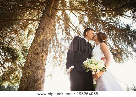 portrait of a couple bride and groom on a park background.
