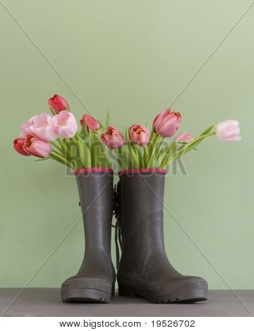 pink & red tulips in rubber boots - green background
