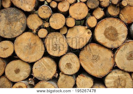A lot of wood in a country house near the wall, woodpile for cold winter