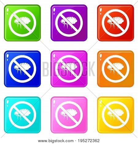 No flea sign icons of 9 color set isolated vector illustration