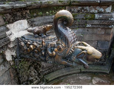 KATHMANDU, BHAKTAPUR, NEPAL. 30 September 2008: Water pours from a goat's head that protrudes from the mouth of a crocodile demon in the Naga Pokhari in The Palace of fifty five Windows in Bhaktapur's Durbar Square.