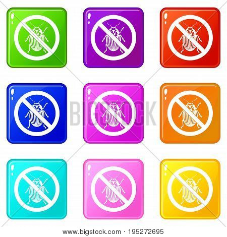 No potato beetle sign icons of 9 color set isolated vector illustration