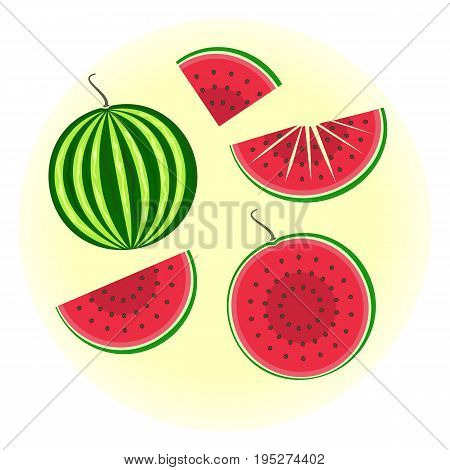 Flat vector watermelon set - full fruit and split in a half quater sliced on pieces. Cute colorful summer fruit