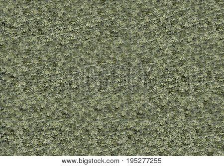 background bumpy green khaki texture stone concrete