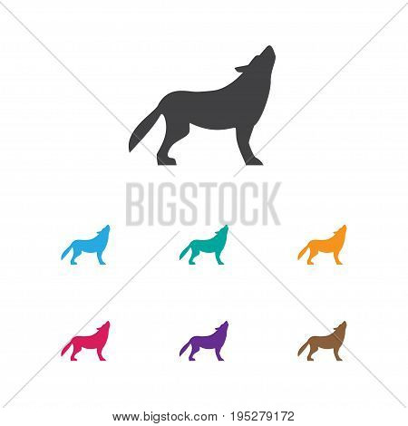 Vector Illustration Of Animal Symbol On Beast Icon. Premium Quality Isolated Wolf Element In Trendy Flat Style.