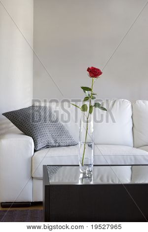 red rose on table in modern living room