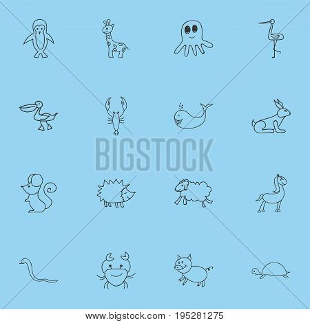 Set Of 16 Editable Animal Icons. Includes Symbols Such As Ewe, Squid, Rabbit And More. Can Be Used For Web, Mobile, UI And Infographic Design.
