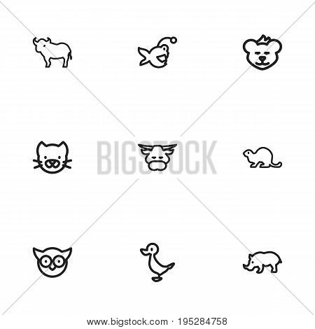 Set Of 9 Editable Zoology Icons. Includes Symbols Such As Ox, Predator Bird, Fish And More. Can Be Used For Web, Mobile, UI And Infographic Design.