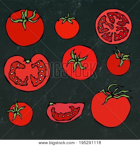 Set of Fresh Red Tomatoes. Half of Tomato, Slice of Tomato, Cherry Tomato. Realistic Doodle Cartoon Style Hand Drawn Sketch Vector Illustration. Isolated on a Black Chalkboard Background.