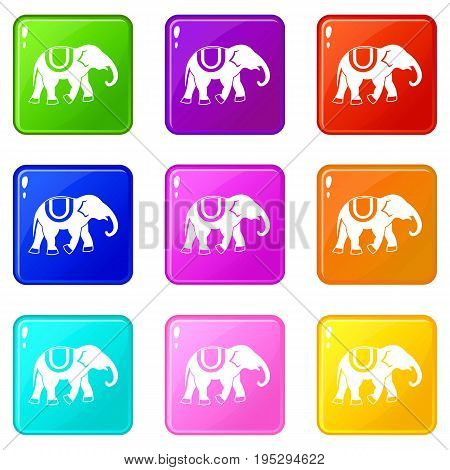 Elephant icons of 9 color set isolated vector illustration