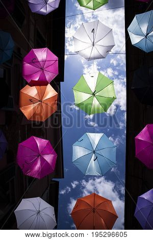 Umbrellas Of Different Colors