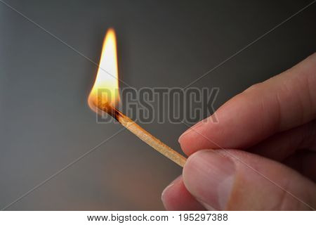 Male hand holding burning safety match stick with a flame getting close to the hand