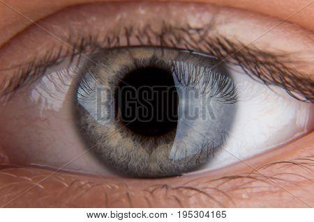 Human eye close-up.Pupil close-up. Human pupil close-up.