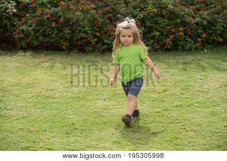 Little Boy With Blond Hair Adorable Face Walking On Meadow