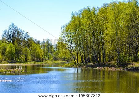Lake early in the spring. Trees sunny day blue sky.