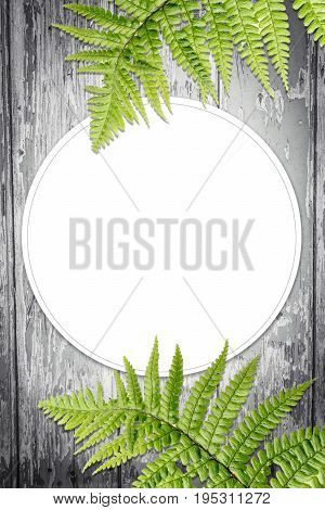 Exotic plants background with white copy space