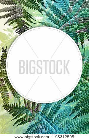 Exotic plants background with fern leaves and copy space