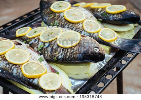 Fresh uncooked fish with lemon lie on metal baking tray. Big raw river fish before baking