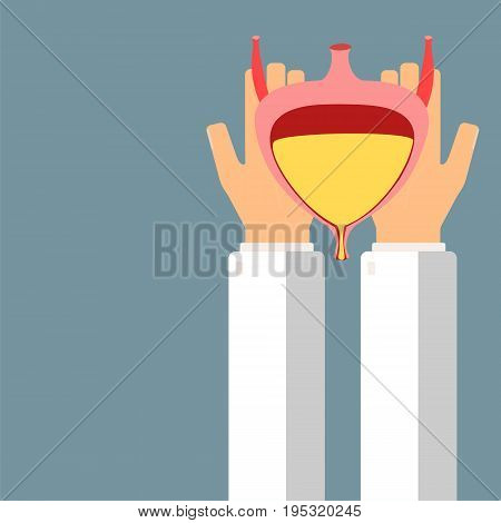 Doctor hold bladder in hands. Transplantation or treatment bladder. Healthcare concept. Vector illustration.