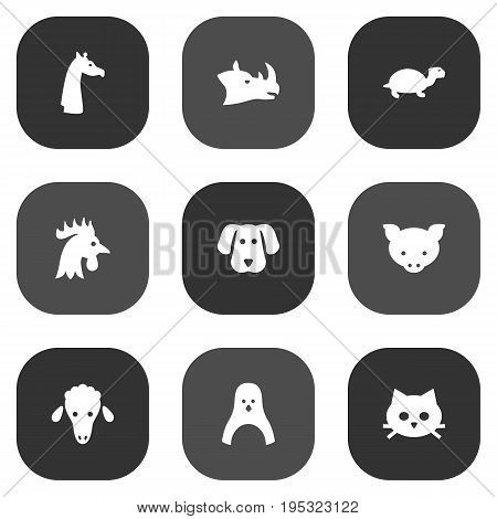 Set Of 9 Zoology Icons Set.Collection Of Rhinoceros, Hound, Rooster And Other Elements.