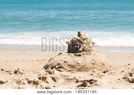 Head of sand on the beach nose mouth and ears lined with seashells