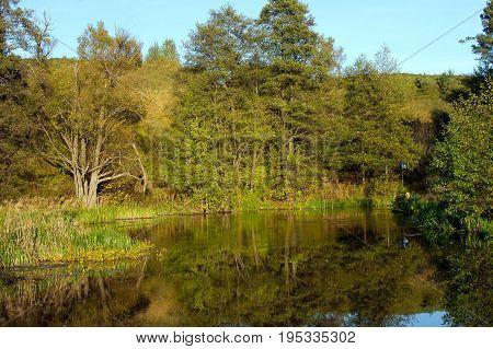 Meander of Rospuda river in Masuria, Podlasie, Poland