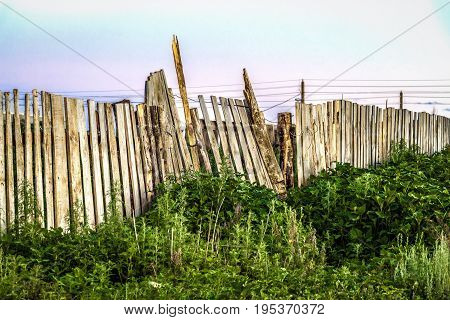 Old skewed falling wooden fence against the background of nature.