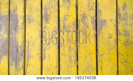 Old yellow wood planks texture. Tree background. Batten