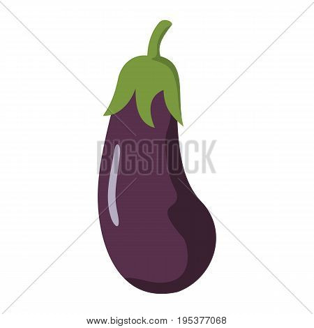 Eggplant icon in cartoon flat style isolated object vegetable organic eco bio product from the farm vector illustration. Eggplant object for vegetarian