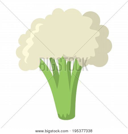 Broccoli icon in cartoon flat style isolated object vegetable organic eco bio product from the farm vector illustration. Broccoli object for vegetarian design