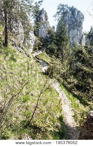 narrow hiking trail on Sip mountain ridge in Velka Fatra mountains in Slovakia with limestone rocks and clear sky during nice spring day