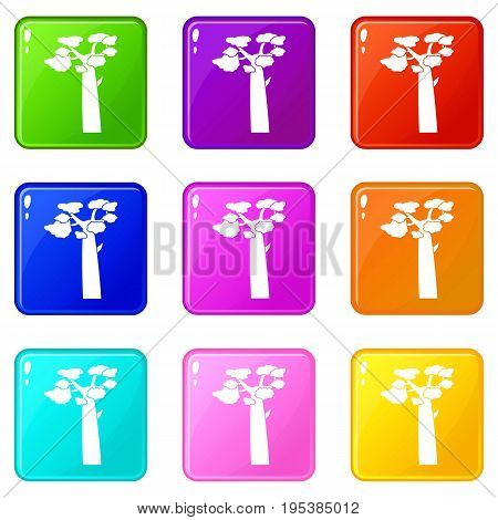 Baobab icons of 9 color set isolated vector illustration