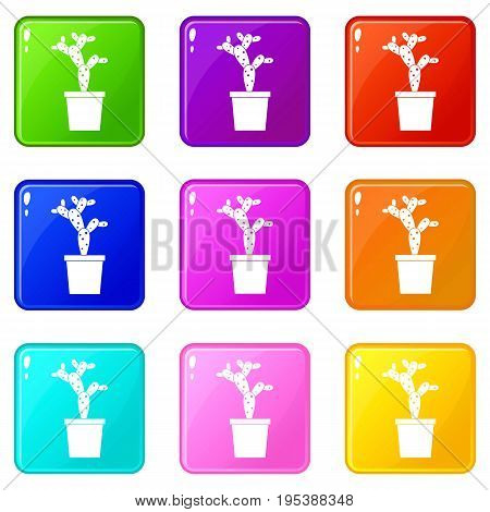 Opuntia icons of 9 color set isolated vector illustration